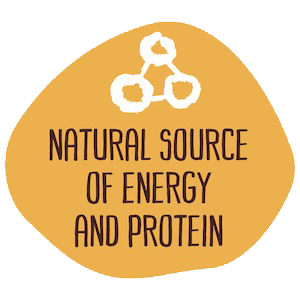 Natural Source of Energy and Protein